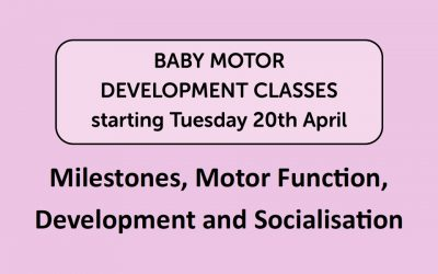 Baby Motor Development Group Sessions